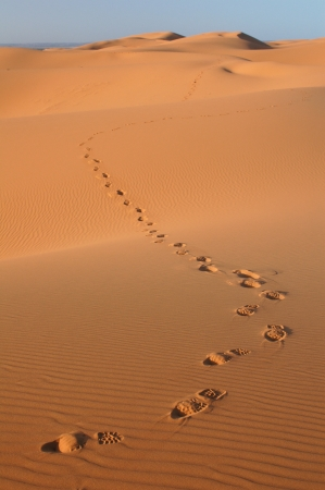 Human footsteps in the sand dunes of Erg Chebbi in the Sahara Desert, Morocco. photo