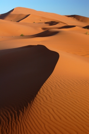 erg: Sand dunes of Erg Chebbi in the Sahara Desert, Morocco  Stock Photo