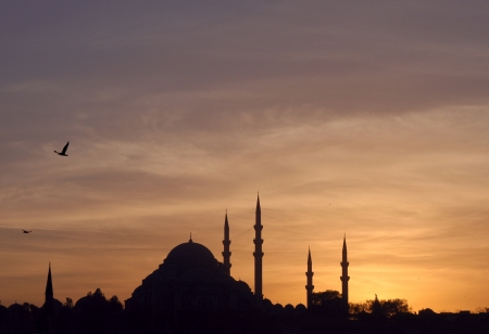 Sunset over the Suleymaniye mosque in Istanbul, Turkey, at sunset photo