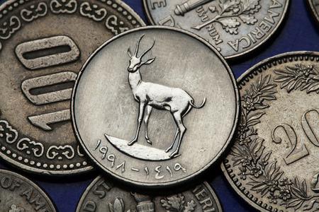 Coins of the United Arab Emirates. Sand Gazelle (Gazella subgutturosa marica) depicted in an UAE twenty five fils coin. photo