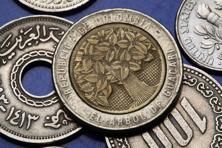 Coins of Colombia. Guacari Tree depicted in Colombian five hundred pesos coin.  photo