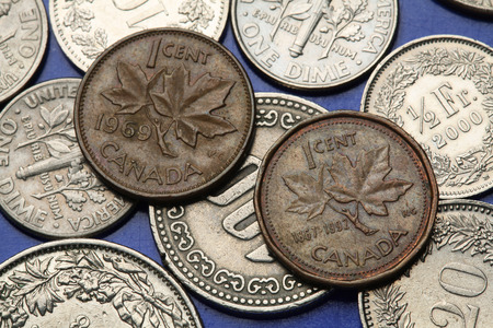 canadian coin: Coins of Canada. Maple leaves depicted in Canadian one cent coins.