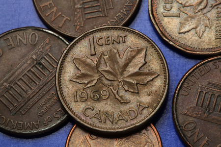 canadian coin: Coins of Canada. Maple leaves depicted in Canadian one cent coin.