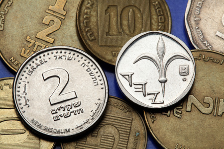 sheqalim: Coins of Israel. Lily depicted in the Israeli one new shekel coin and the Israeli two new shekels coin. Stock Photo