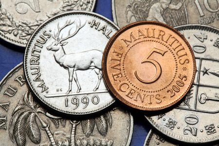 five cents: Coins of Mauritius. Mauritian rusa deer (Rusa timorensis) depicted in the Mauritian half rupee coin and the Mauritian five cents coin.