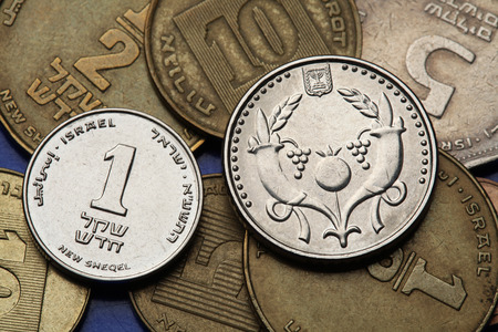 sheqalim: Coins of Israel. Two cornucopia depicted in the Israeli two new shekels coin and the Israeli one new shekel coin.