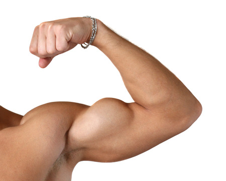 only the biceps: Flexed biceps isolated on white