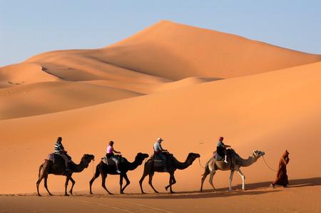 Caravana de camellos atravesando las dunas de arena en el desierto del Sahara, Marruecos.