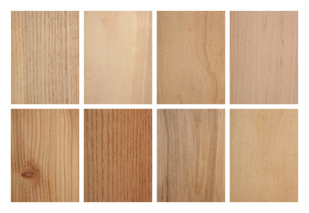 Set of eight wood textures: ash tree, aspen, cypresses, hazel, larch tree, phellodendron, rowan tree and linden