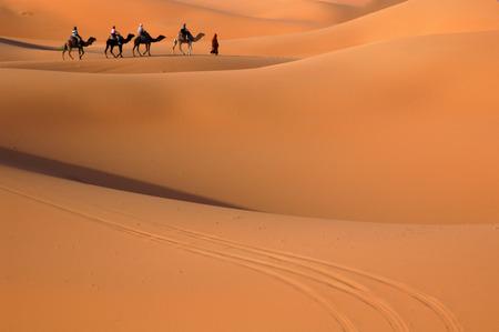 Camel Karawane durch die Sanddünen in der Wüste Sahara, Marokko. Standard-Bild - 34596691
