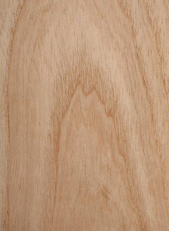 ash tree: Frassino struttura di legno Archivio Fotografico