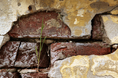 Old brick wall with cracked plaster. photo