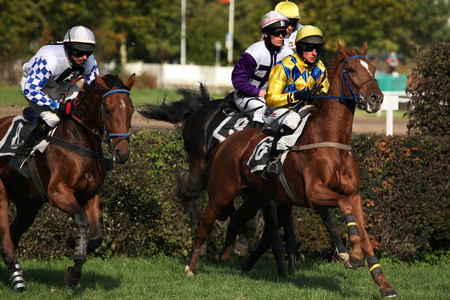 steeplechase: PARDUBICE, CZECH REPUBLIC - OCTOBER 13, 2013: Jockeys and their horses compete during the Velka Pardubicka Steeplechase, the toughest steeplechase in continental Europe, in Pardubice, Czech Republic.