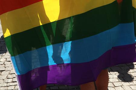 rainbow flag: PRAGUE, CZECH REPUBLIC - AUGUST 17, 2013: Couple covered with a rainbow flag attends the Prague Gay Pride Festival in Prague, Czech Republic. Editorial