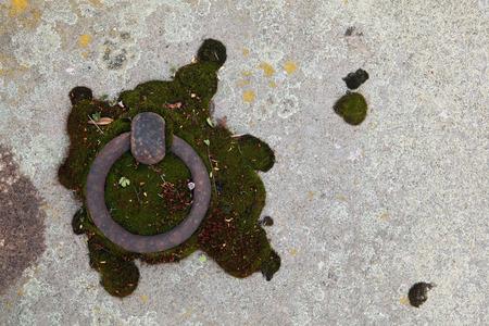 terezin: Vecchio anello lapide nel cimitero abbandonato a Terezin, Repubblica Ceca