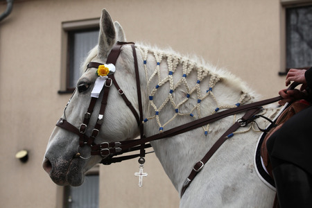 ceremonial: CROSTWITZ, GERMANY - APRIL 8, 2012: Decorated horse attend the Easter ceremonial equestrian procession in the Lusatian village of Crostwitz near Bautzen, Upper Lusatia, Saxony, Germany.