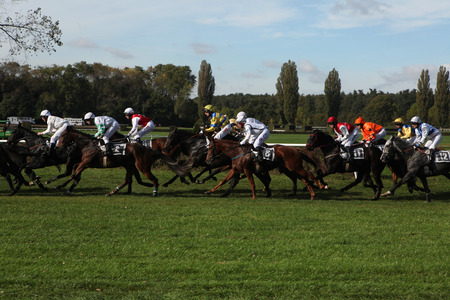 steeplechase: PARDUBICE, CZECH REPUBLIC - OCTOBER 13, 2012: Jockeys and their horses compete during the Velka Pardubicka Steeplechase, the toughest steeplechase in continental Europe, in Pardubice, Czech Republic.