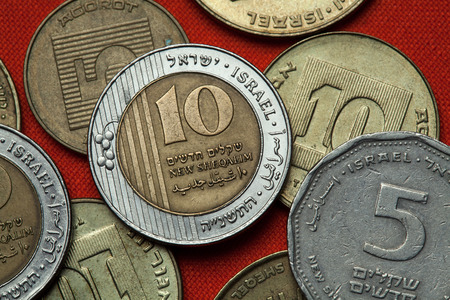Coins of Israel. Israeli ten new shekels coins.