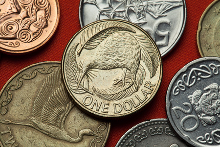 Coins of New Zealand. Kiwi (Apteryx australis) and silver fern (Cyathea dealbata) depicted in the New Zealand one dollar coin. Stock Photo