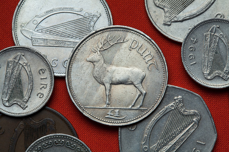 depicted: Coins of Ireland. Red deer (Cervus elaphus) depicted in the Irish one pound coin. Stock Photo