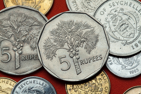 five rupee: Coins of the Seychelles. Coconut palm (Cocos nucifera) depicted in the Seychellois five rupee coin. Stock Photo