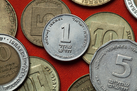 Coins of Israel. Israeli one new shekels coin.