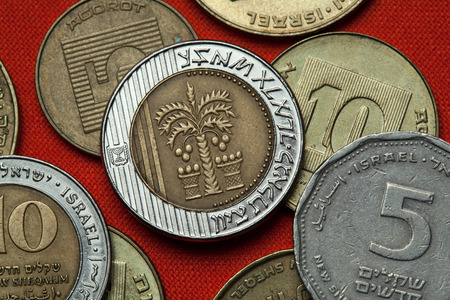 sheqalim: Coins of Israel. Palm tree with seven leaves and two baskets depicted in the Israeli ten new shekels coins.