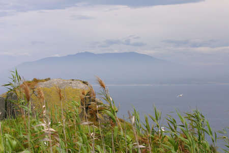 Grassy Island with view to mainland and coastline