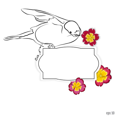 primrose: Vector summer background. Summer fun. Hello Summer vector illustration. bullfinch with flowers primrose, it shows us that winter is gone, and ends with a long spring is not far off the summer Illustration