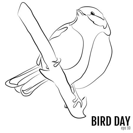 Día Nacional De Aves, Ilustración Vectorial. Para El Diseño, Libro ...