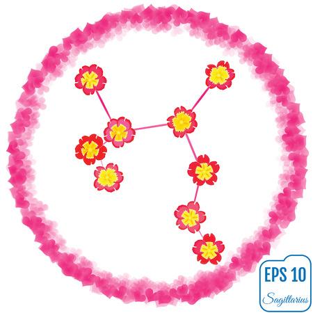 Zodiac sign Sagittarius. Primrose concept. Flowers concept. Constellation Sagittarius.