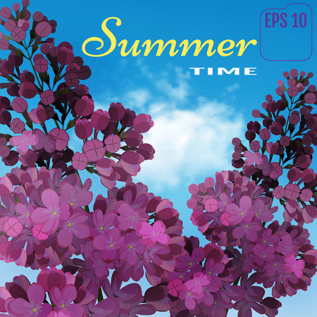 Sweet Lilac on the blue-sky background. Vector Lilac flowers, blue-sky and light cloud. Two branches with summer lilac flowers. Summer time concept