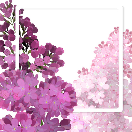 A beautiful frame passing through the flowers of lilac. Vector illustration, white background. Illustration