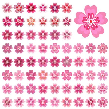 Isolated flowers of sakura set cartoon pink and white blossoms isolated flowers of sakura set cartoon pink and white blossoms of japanese cherry tree mightylinksfo