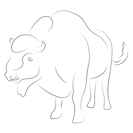 Black linebison on white background. Hand drawing vector. Sketch style graphic animal. Vettoriali