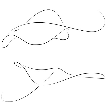 Black line stingray on white background. Hand drawing vector graphic fish. Sketch style. Animal illustration.