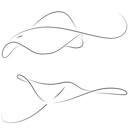 Raie de ligne noire sur fond blanc. Poisson graphique vectoriel de dessin à la main. Style de croquis. Illustration animale. Vecteurs