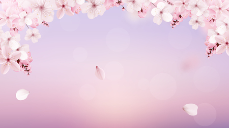 Beautiful delicate background with blossoming light pink sakura flowers with place for text. Delicate floral design. Realistic vector illustration. Modern nature backdrop. Ecology concept.