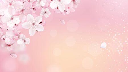 Spring Sakura petals falling down.
