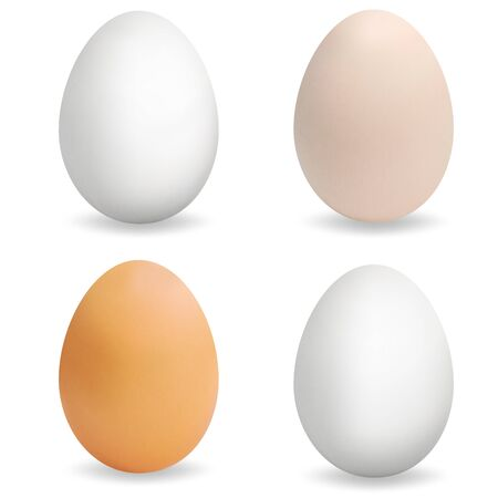 Realistic multi-colored eggs. Set of 3d eggs. Realistic egg with texture. Vector Ilustracja