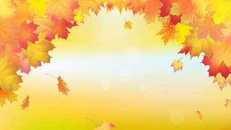 Falling golden autumn maple leaves. Vector