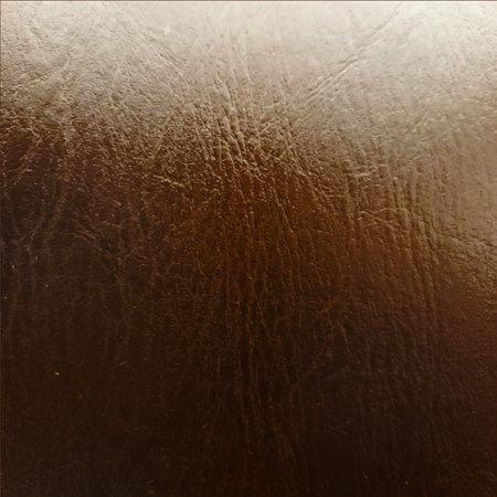 Wood digital paper. Varnished wood  イラスト・ベクター素材