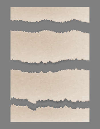 Torn ripped cardboard. Textured set. Vector