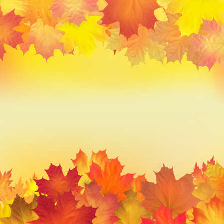 Red, orange, brown and yellow autumn leaves. Vector