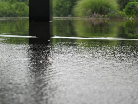 Flood Water 版權商用圖片