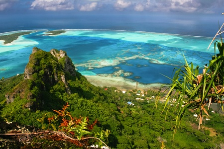 french polynesia: Scenic view of coral reef, Maupiti, French Polynesia