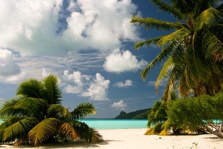 Infinity tropical beach on Maupiti, French Polynesia, Society Islands  photo