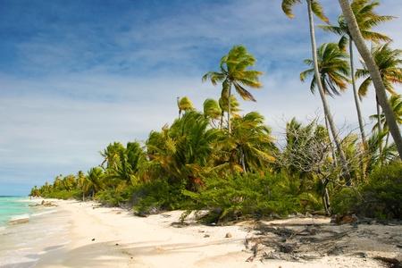 Paradise beach, Fakarava, French Polynesia  Stock Photo