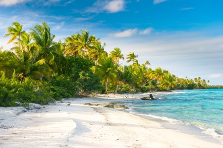 polynesia: Beautiful Fakarava beach, French Polynesia Stock Photo