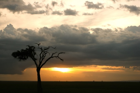 Sunset at Samburu, Kenya Stock Photo - 12813774